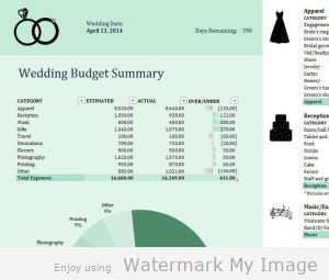Budget Your Wedding